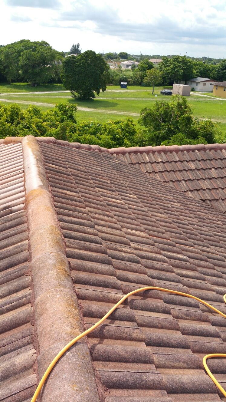 big green men provides the following service no pressure roof cleaning - Roof Cleaning